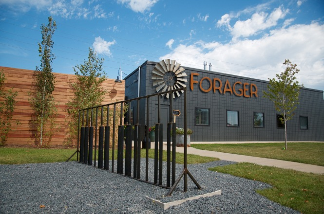 forager-4