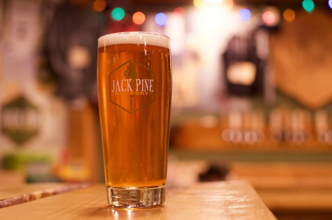 jack-pine-2-of-8